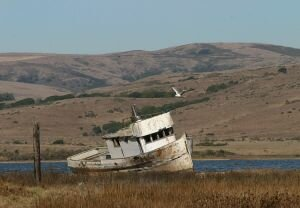 Pt Reyes, California
